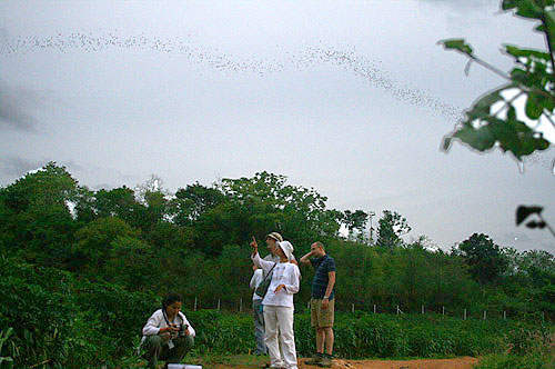 Standard One and half day trips - Khaoyai Nature Life & Tours